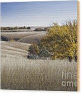 Flint Hills Autumn 013 Wood Print