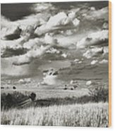 Flint Hills Prairie Wood Print