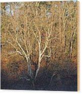 Flint River 16 Wood Print