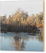 Flint River 27 Wood Print
