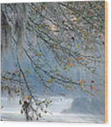 Flint River 29 Wood Print