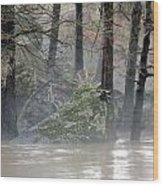 Flint River Rising Wood Print