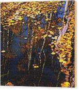 Floating Gold Wood Print