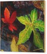 Floating Green Leaf Wood Print