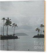 Floating Island Wood Print