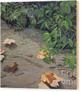 Floating Leaves By George Wood Wood Print