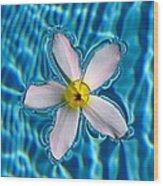 Floating Soul Wood Print