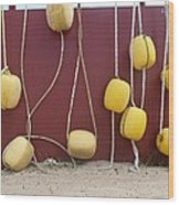 Floats At Chileno Bay Wood Print