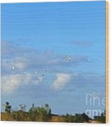Flock Of Egrets Wood Print by Andres LaBrada