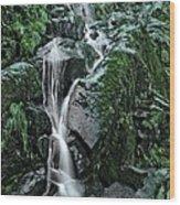 Flood Falls Wood Print