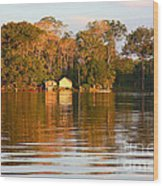 Flooded Amazon With Houses Wood Print