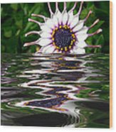 Flooded Flower Wood Print