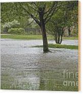 Flooded Park Wood Print