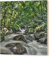 Flooded Small Stream  Wood Print