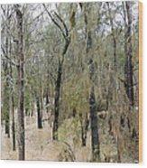 Flooding Dry Creek Wood Print