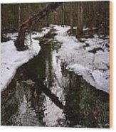 Flooding Forest Wood Print