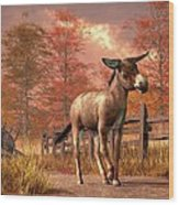 Flop Eared Donkey Wood Print