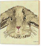 Floppy Bunny Wood Print