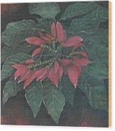Flor De Pascua Wood Print by Maurice Dilan