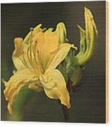 Flora 3 Wood Print