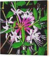 Flora In Pink Wood Print