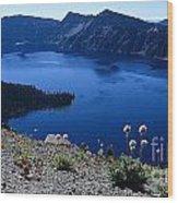 Flora Of Crater Lake Wood Print