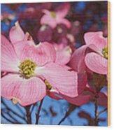 Floral Art Print Pink Dogwood Tree Flowers Wood Print