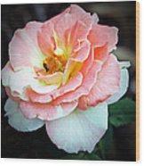 Floral Bee Wood Print