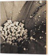 Floral Close-up V Wood Print