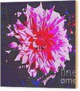 Floral Coral Wood Print