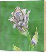 Floral Crown Wood Print
