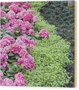 Floral Curves Wood Print