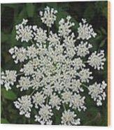 Floral Disc Wood Print
