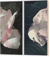 Floral Duo Wood Print
