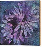 Floral Fiesta - S14c Wood Print