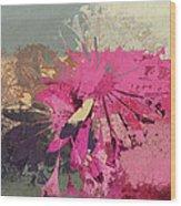 Floral Fiesta - S33bt01 Wood Print