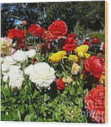 Floral Gardens Wood Print