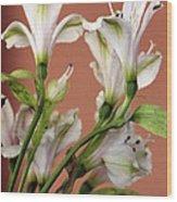 Floral Highlights Wood Print