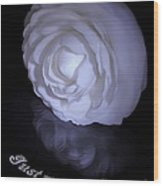 Floral Reflections 4 - Camellia Wood Print