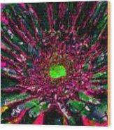Floral Revolution 2 Wood Print