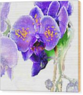 Floral Series - Orchid Wood Print