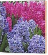 Floral Shades 4 Wood Print