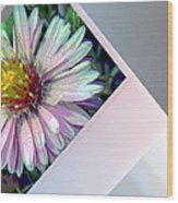 Floral Snap Shot Wood Print