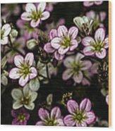 Floral Wallpaper Wood Print