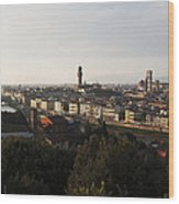 Florence Form The Piazza Michalengelo Wood Print