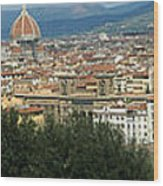 Florence Italy Panoramic Wood Print