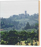Florence Landscape Wood Print