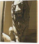 Florence Lion Wood Print
