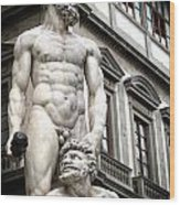 Florence Statue Wood Print
