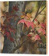 Florida Autumn Leaves Wood Print